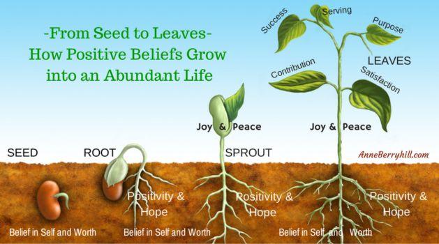 seedtoleavesgood.jpg